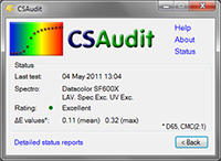 CS Audit
